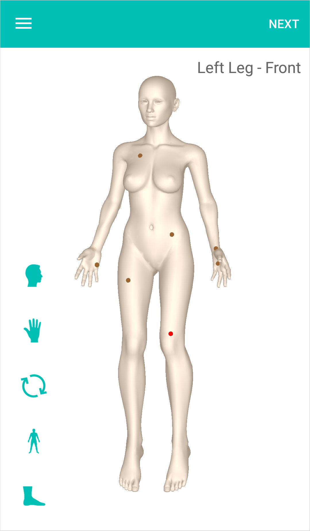 3D_Body_Map.png