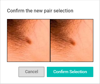4._Confirm_Pair_Selection.PNG